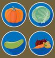 vegetables4 vector image