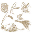 cereals set hand drawn windmill wheat oats vector image
