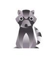 raccoon stylized geometric animal low poly design vector image