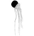Jellyfish silhouette vector image