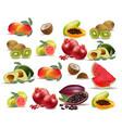 fruits coconut avocado papaya kiwi pomegranate vector image