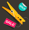 Sale Labels Peg with Sale Sticker and Tag vector image