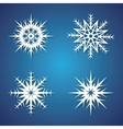 Winter snowflakes set for Christmas design vector image
