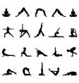 practice yoga vector image