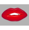 Open Mouth with red lips vector image
