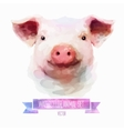 set of watercolor  Cute pig vector image
