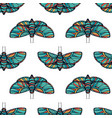 colorful butterfly seamless background vector image