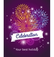 Fireworks celebration poster template vector image