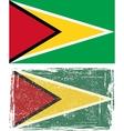 Guyana grunge flag vector image