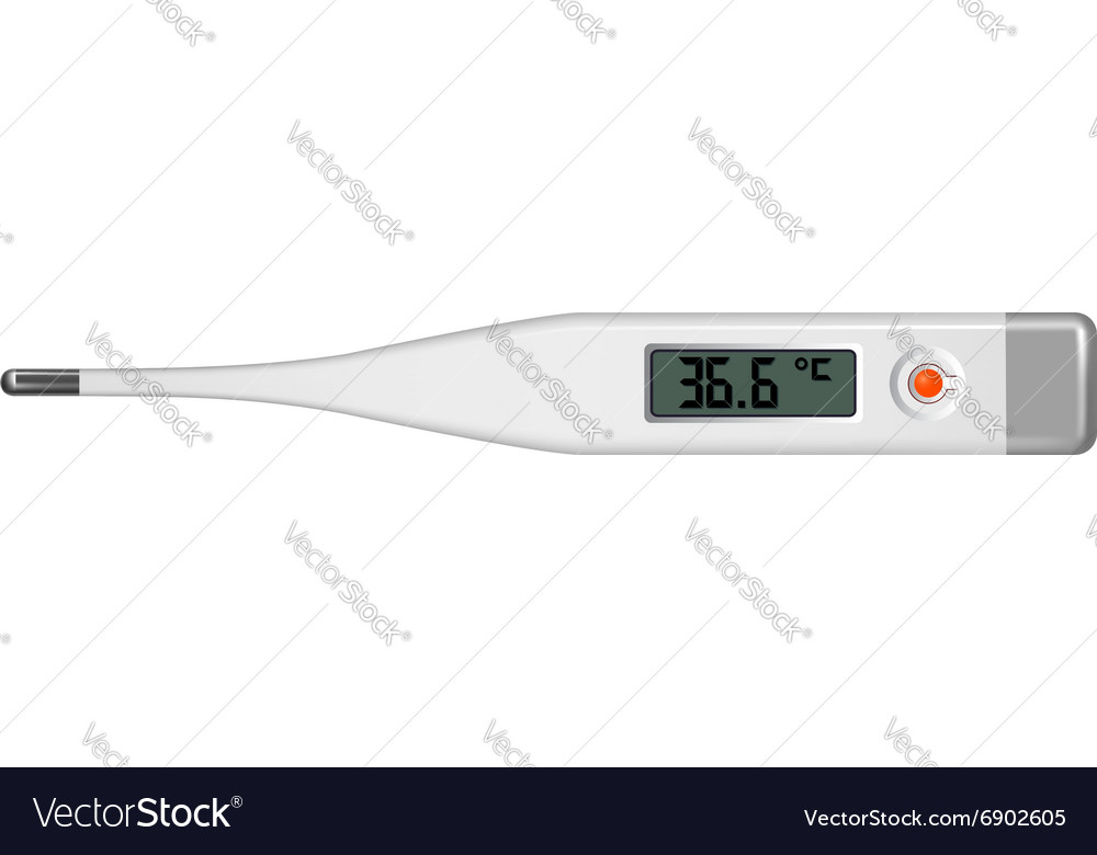 Electronic thermometer vector