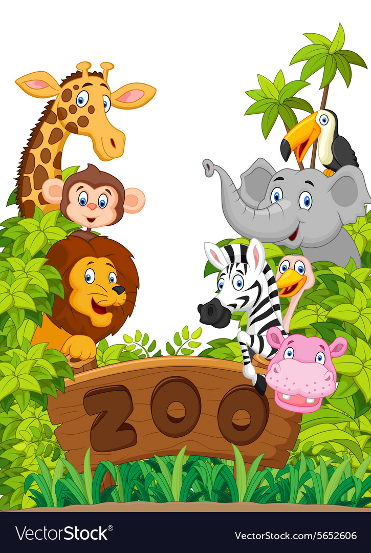 Collection of zoo animals vector