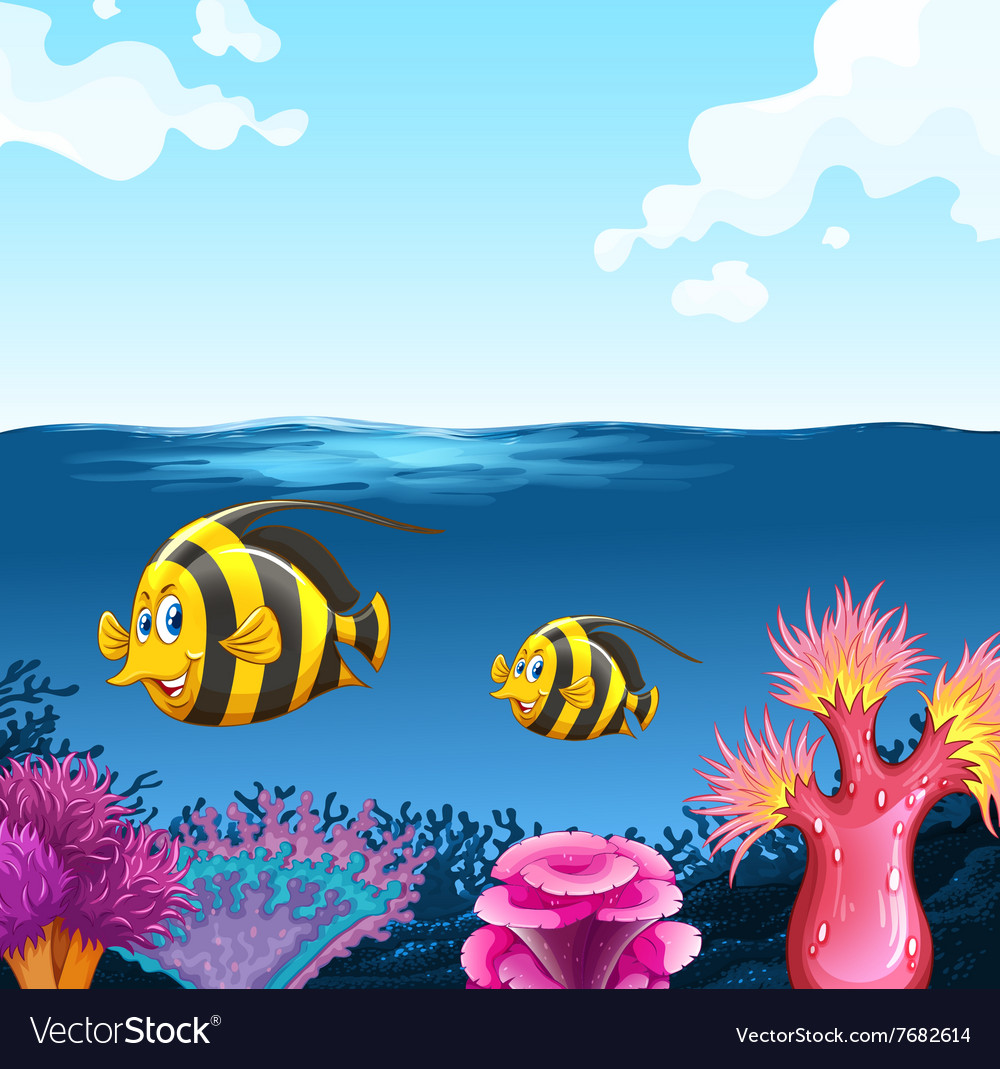 Two fish swimming under the sea vector