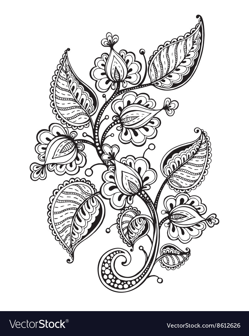 Hand drawn fancy flower branch and leaves vector