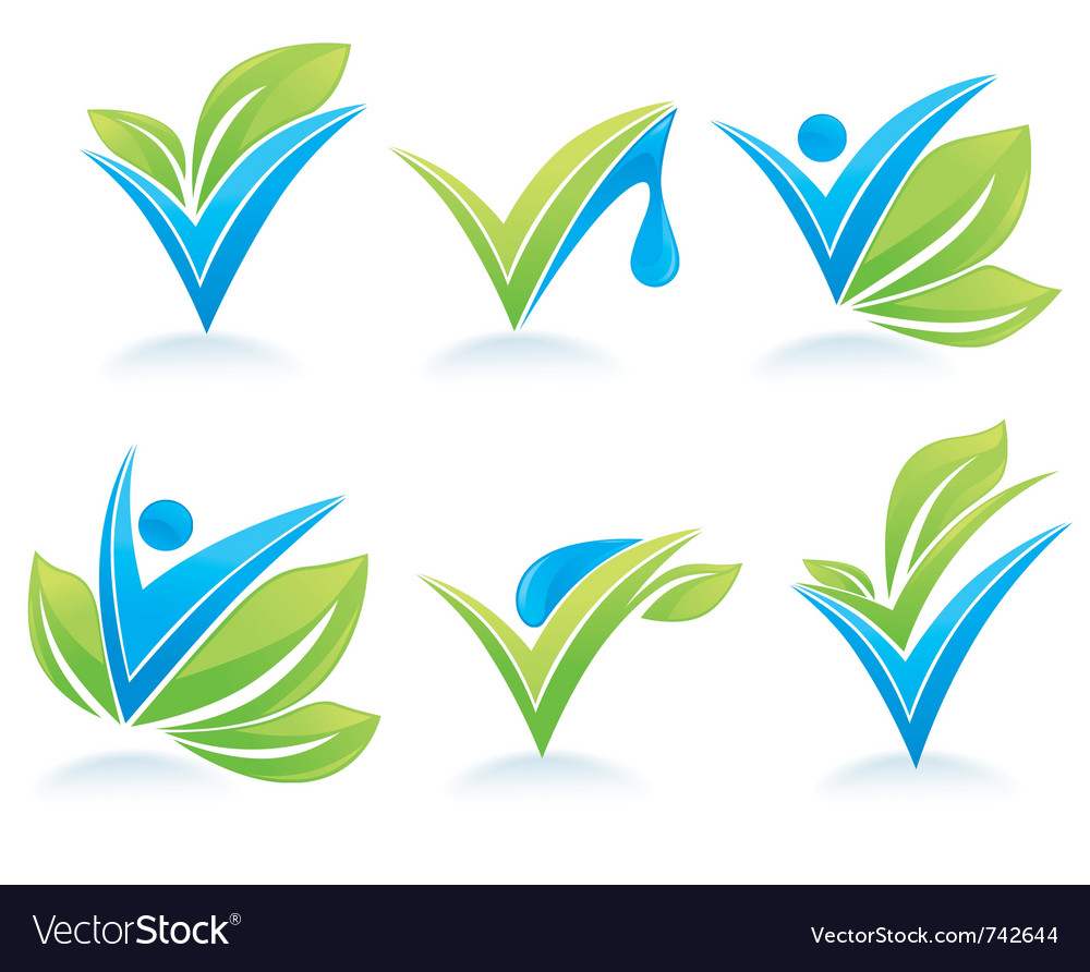Drop and leaves vector