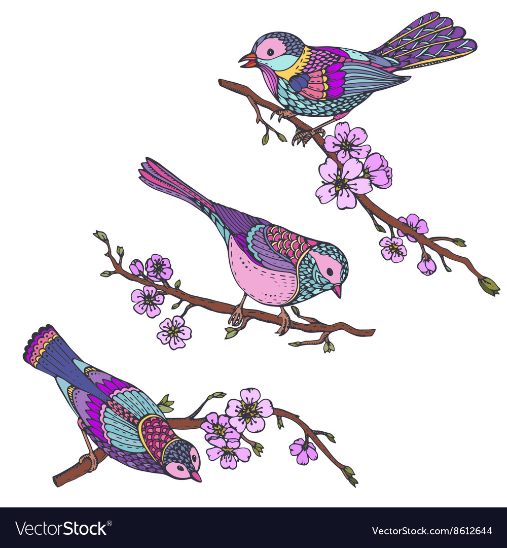 Ste of hand drawn ornate birds on sakura branches vector