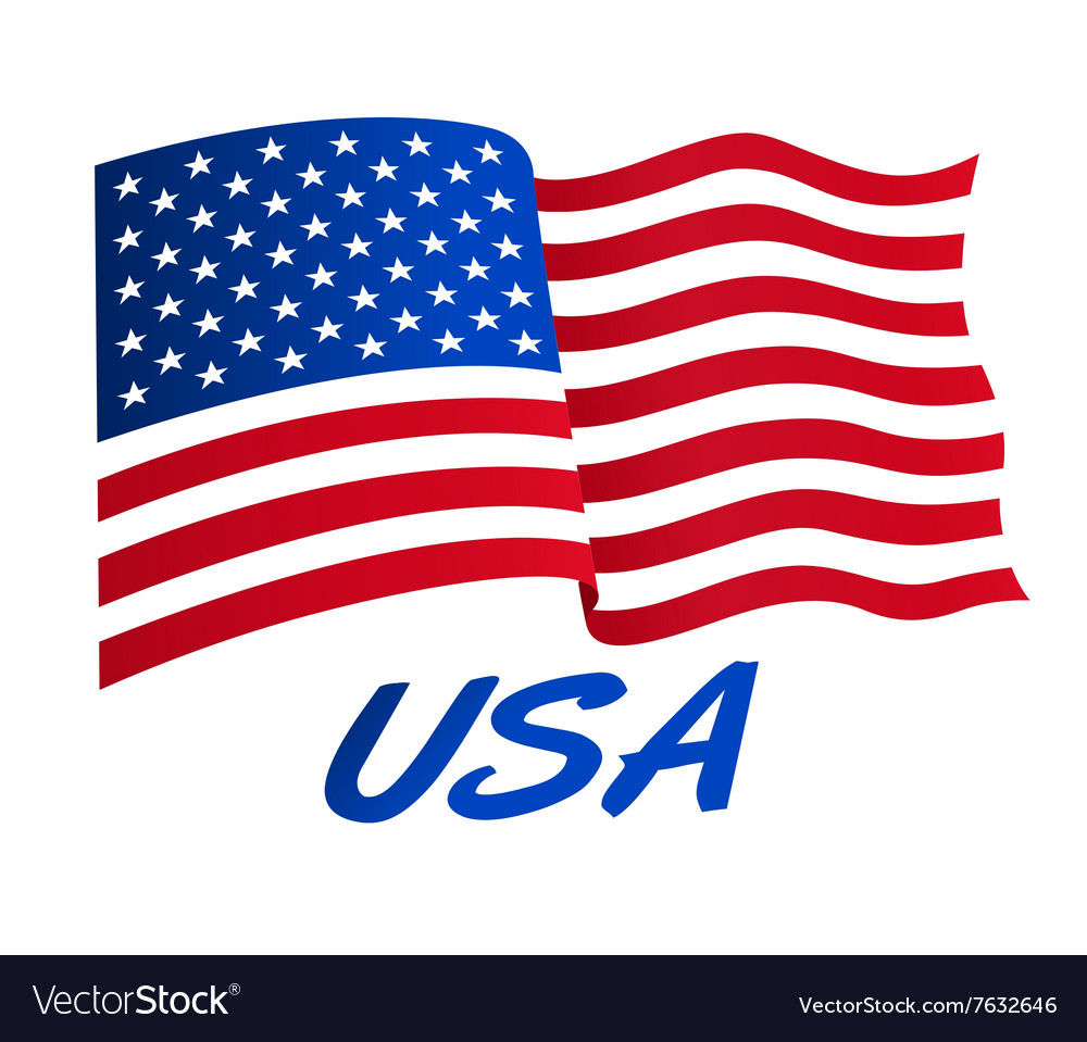 American flag in wind with usa vector