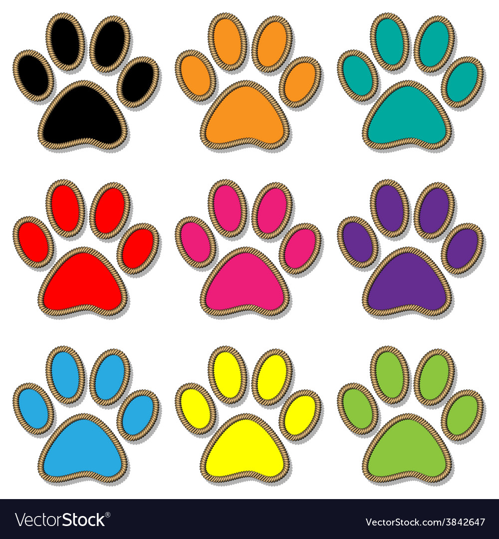 Paw print set vector