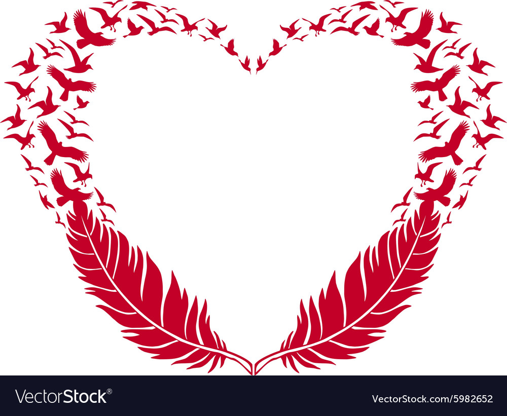 Red heart with feathers and flying birds vector