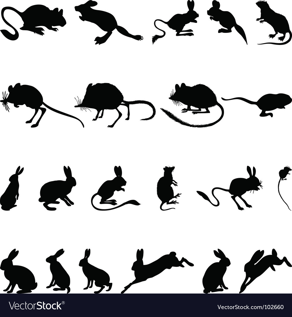 Rodents silhouettes vector