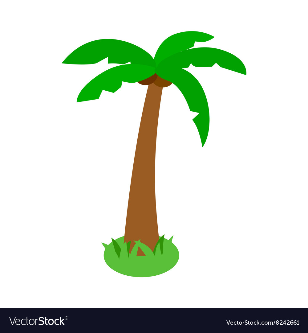 Palm tropical tree icon isometric 3d style vector