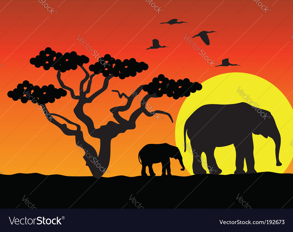 Elephants in africa vector