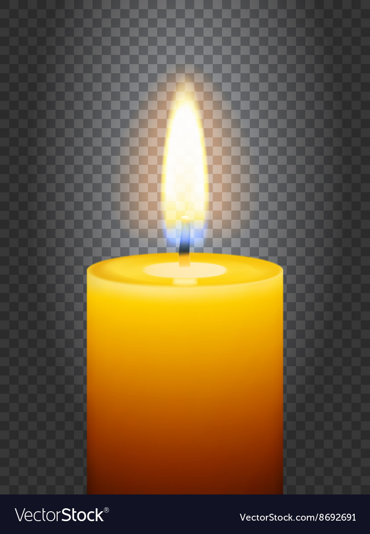 Realistic burning candle vector