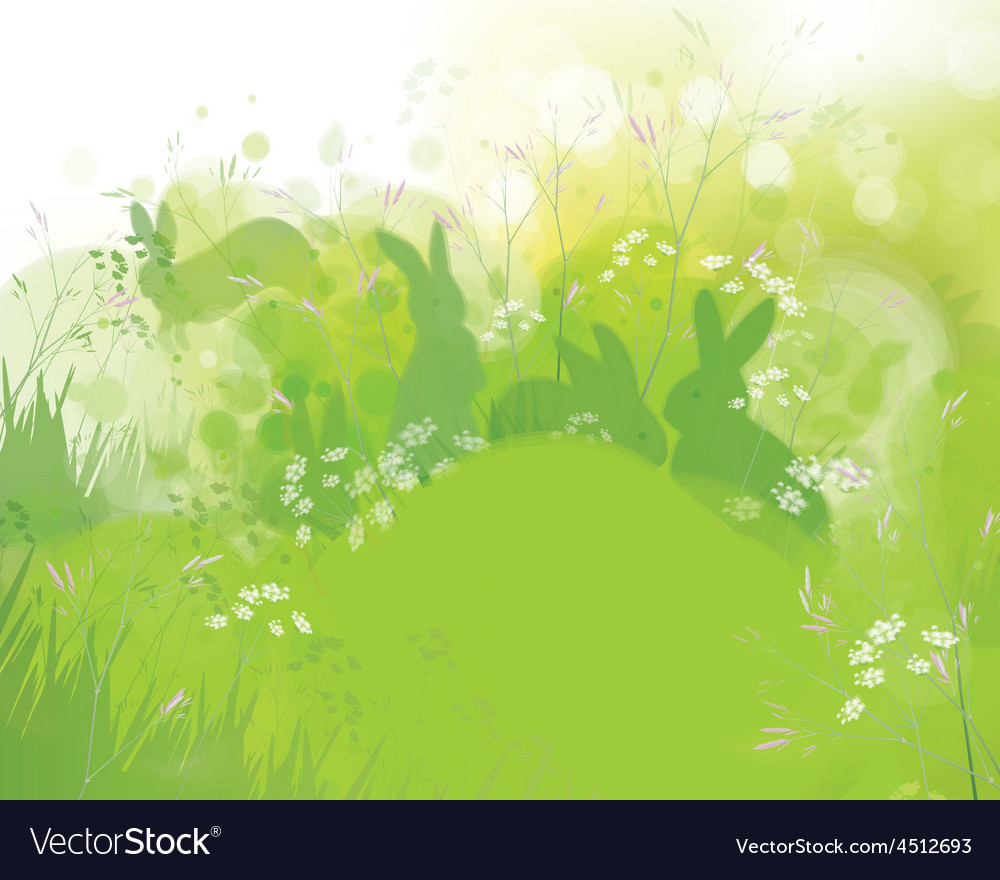 Rabbits grass vector