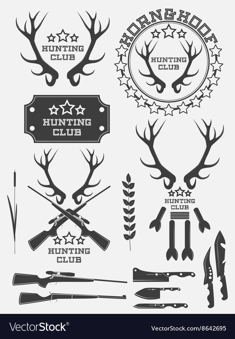 Set of vintage hunting logo labels and badges deer vector