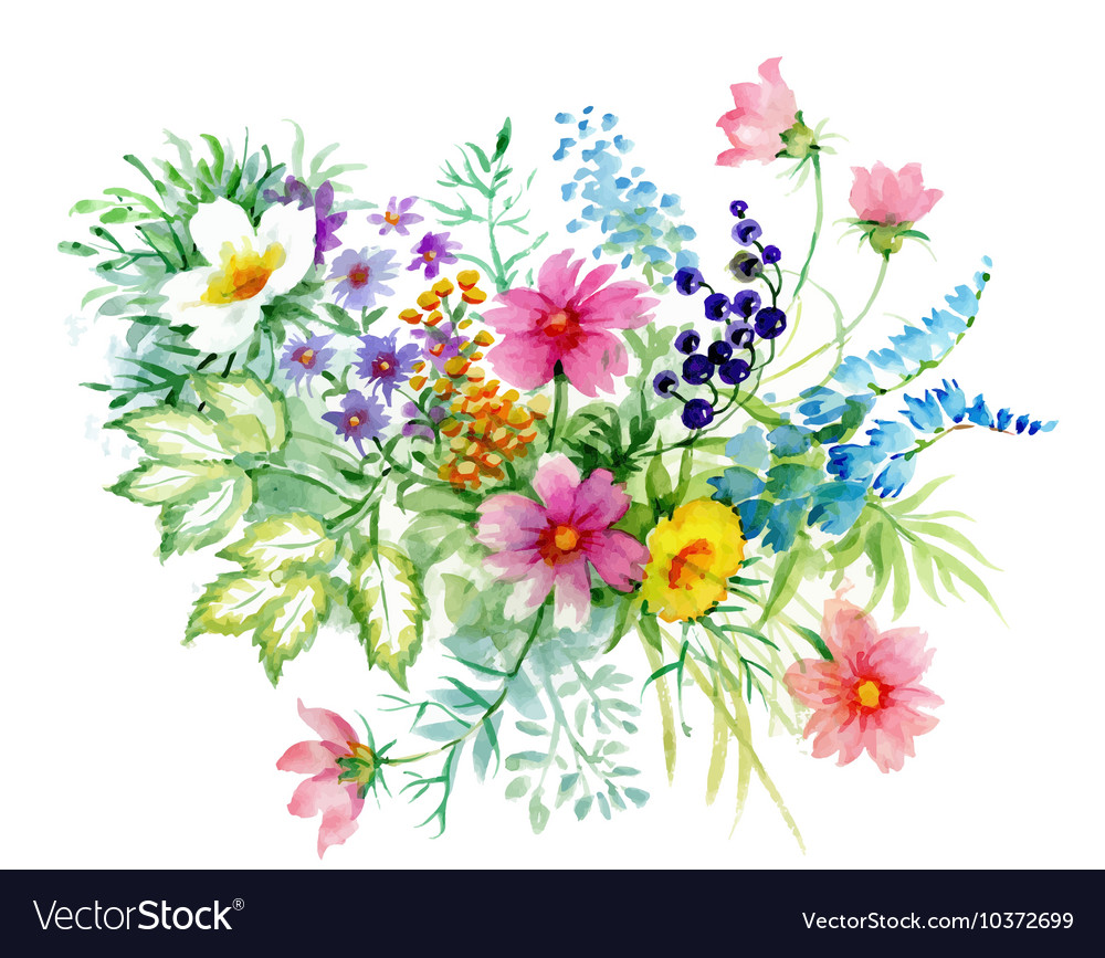 Flowers watercolor manual vector