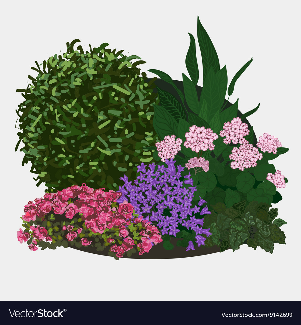 Garden flower bed vector
