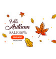 autumn sale background with falling autumn leaves vector image