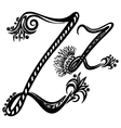 letter Z z vector image vector image