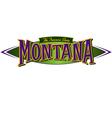 Montana The Treasure State vector image