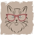 cat with red glasses vector image vector image