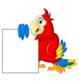 Macaw bird with blank sign vector image