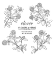 clover set vector image