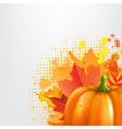 Grunge Background With Orange Pumpkin vector image