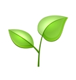 Ecology Concept Icon with Glossy Green Leaves vector image