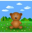 Teddy bear on a summer flower meadow vector image vector image