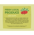 Summer Farm Fresh poster template or brochure vector image
