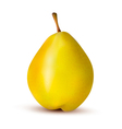 Rpe pear isolated on white Vector Image