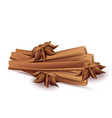 cinnamon sticks and anise stars isolated on vector image