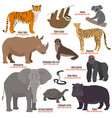 different kinds deleted species die out rare vector image