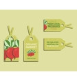 Summer Farm Fresh sticker template or brochure vector image