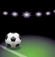 soccer ball and the stadium vector image