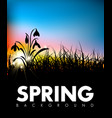 spring grass dawn background vector image