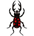 cartoon beetle on white background vector image