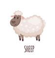 Cute sheep in flat style vector image