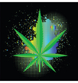 cannabis background vector image