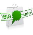 BIG sale green symbol vector image